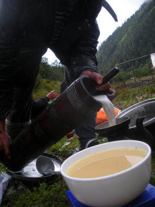 Butter tea--butter, bitter brick tea, and salt-- is a staple of diets and identities across the Tibetan plateau. It provides ample nutrition for days on the farm or pasture, or for the two-week journey around the mountain.