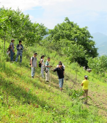 A community leader guides a team of student research assistants, measuring trees in community forests and plantations.